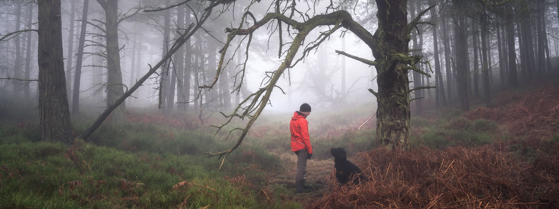 Simon Baxter and Meg - Woodland Photography