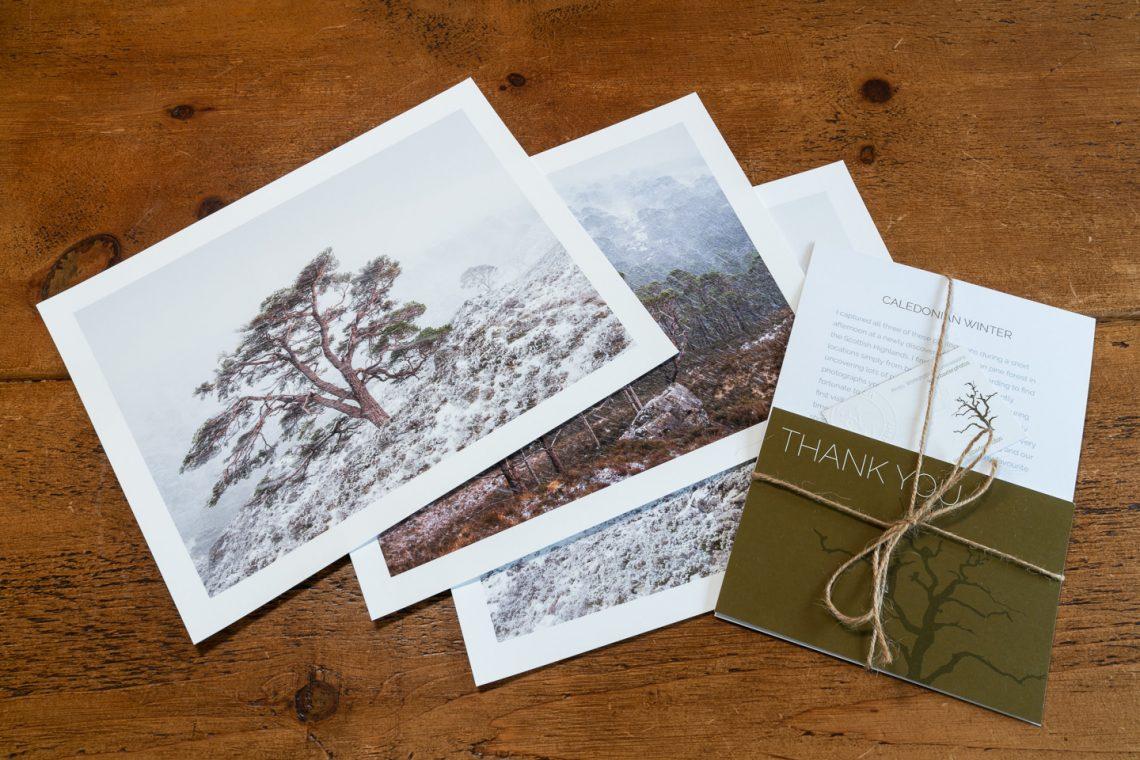 Caledonian Winter Box Set