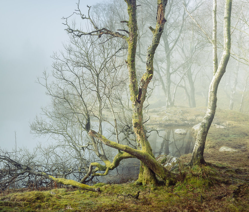 Tarn Tales - Holme Fell by Colin Bell
